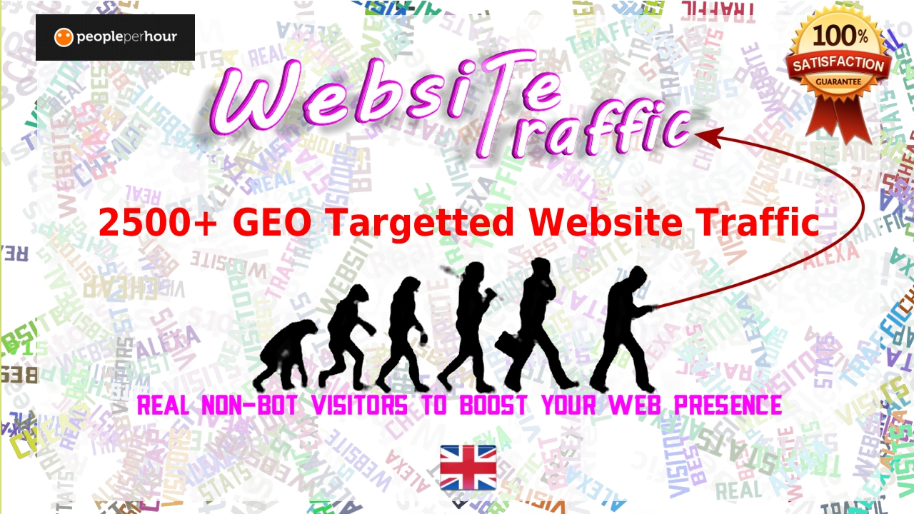 Buy 2500 Real GEO Targetted Traffic adn Visitors to your website
